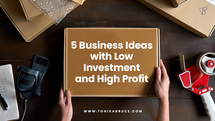 5 Business Ideas with Low Investment and High Profit